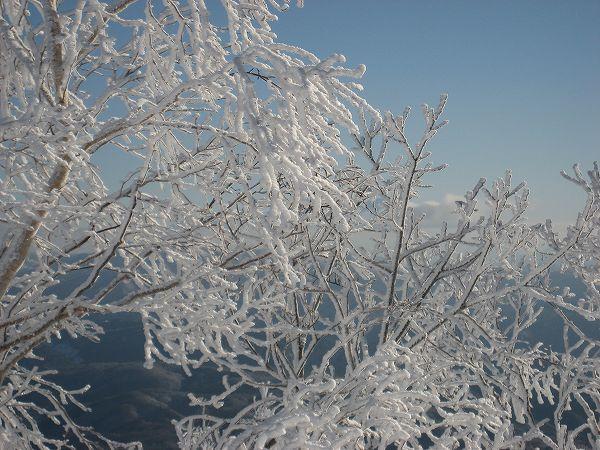 2.樹氷-1.jpg