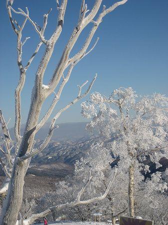 3.樹氷-2.jpg