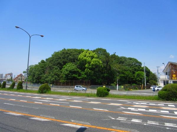 40.道路の向こう側には永山古墳.jpg