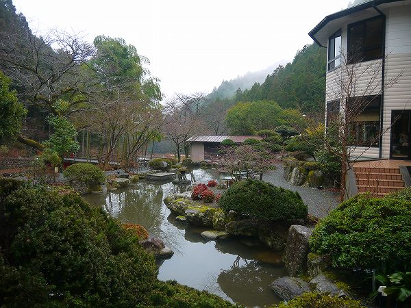 43.雨上がりの庭もまた美しい.jpg