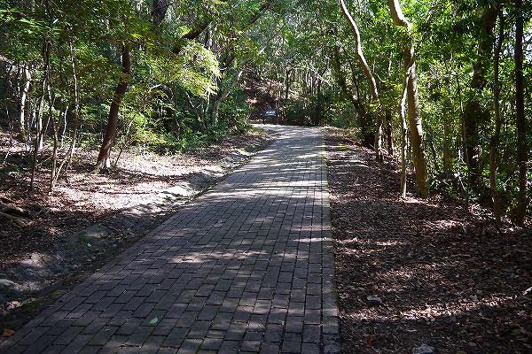 5.森の中のレンガ道を往きます.jpg
