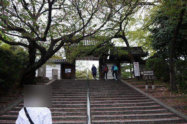 5.道明寺天満宮へ.jpg