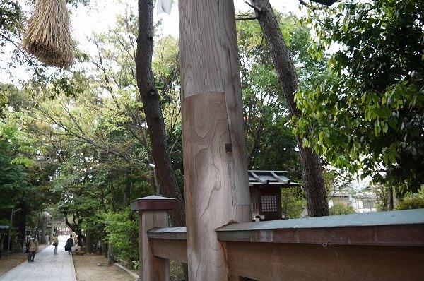 75.接ぎ木されてます(右の柱).jpg