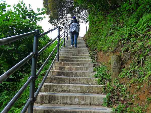 8.まるで登山.jpg