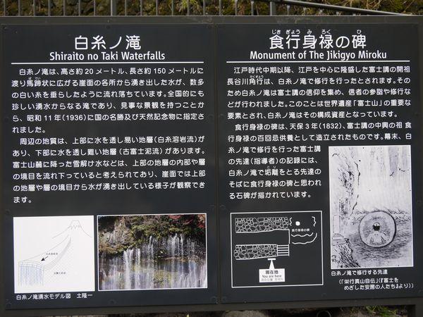 白糸の滝と朝霧高原-3.jpg
